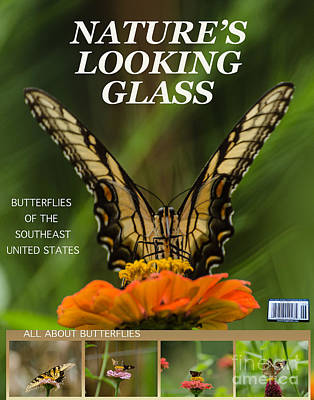 Target Threshold Nature - Nature Looking Glass by Donna Brown