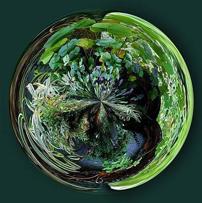Nature Orb Art Print by Paulette Thomas