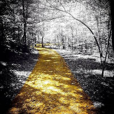 Trail Photograph - #nature #outdoors #trail #sunshine by Jason Montgomery