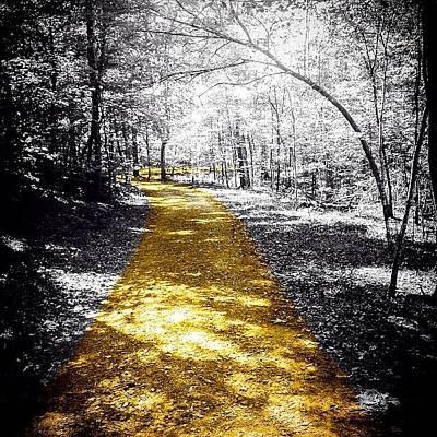 #nature #outdoors #trail #sunshine Art Print
