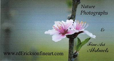 Photograph - Nature Photo Bc by Roy Erickson
