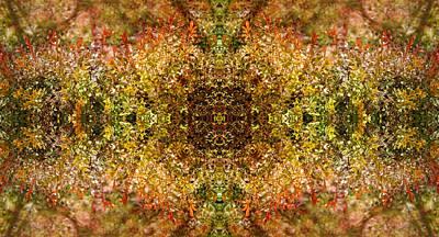 Nature Portal Original