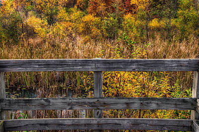 Photograph - Nature Preserve From Observation Deck by Gene Sherrill