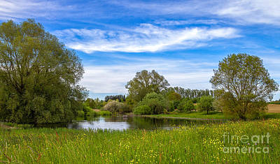 Photograph - Nature Preserve Segete by Bernd Laeschke