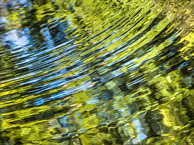 Photograph - Nature Reflections by Carolyn Marshall