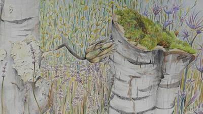 Nature Study Italy Art Print by Diana J Jones