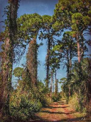 Nature Trail Art Print by Hanny Heim