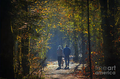 Photograph - Nature Trail Walk by Sharon Talson