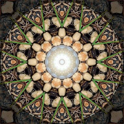 Photograph - Nature Vortex Mandala #1 by Beth Sawickie