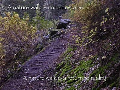 Nature Walk Art Print by Tom Trimbath