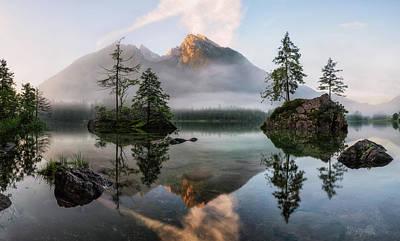 Fir Photograph - Nature's Awakening by Daniel F.