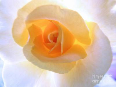 Photograph - Natures Beauty by Robyn King