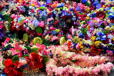 Priska Wettstein Pink Hues - Natures Bounty of Color by Rev Richard W Burdett
