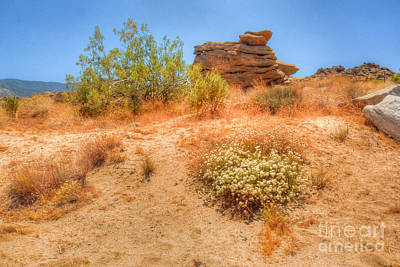 Photograph - Nature's Cairn by Deborah Smolinske