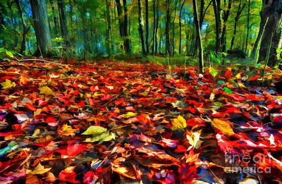 Natures Carpet In The Fall Art Print by Dan Friend