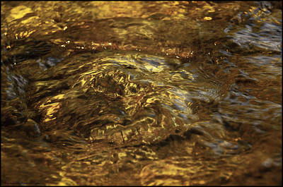 Brrok Photograph - Natures Fresh Water Fountain by LeeAnn McLaneGoetz McLaneGoetzStudioLLCcom