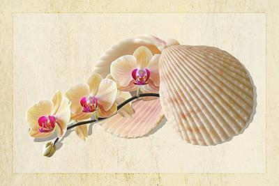 Golden Pink Orchid Photograph - Nature's Golden Gems by Gill Billington