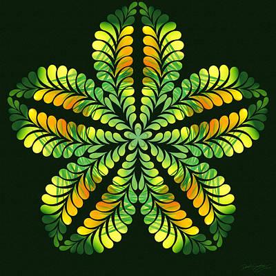 Digital Art - Nature's Mandala 02 by Derek Gedney
