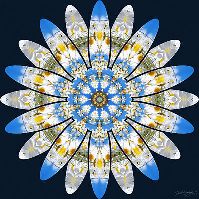 Digital Art - Nature's Mandala 11 by Derek Gedney