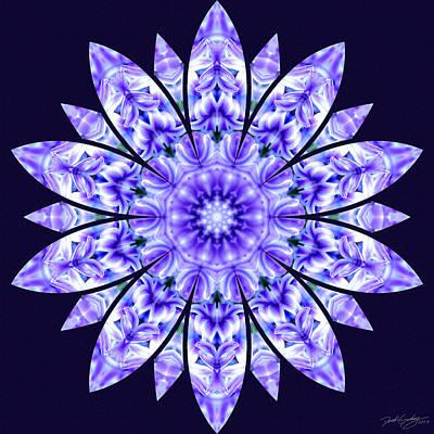 Digital Art - Nature's Mandala 15 by Derek Gedney