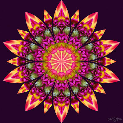 Digital Art - Nature's Mandala 16 by Derek Gedney