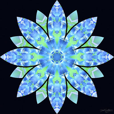 Digital Art - Nature's Mandala 17 by Derek Gedney