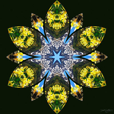 Digital Art - Nature's Mandala 18 by Derek Gedney