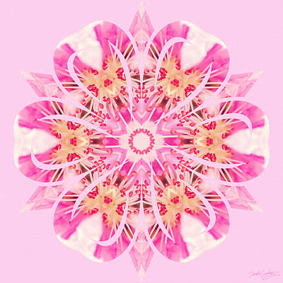 Digital Art - Nature's Mandala 21 by Derek Gedney