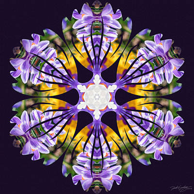 Digital Art - Nature's Mandala 23 by Derek Gedney