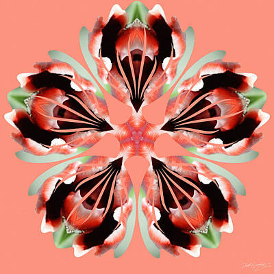 Digital Art - Nature's Mandala 24 by Derek Gedney