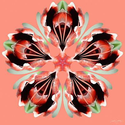 Digital Art - Nature's Mandala 24 by Derek Gedney