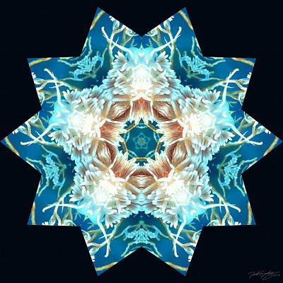 Digital Art - Nature's Mandala 28 by Derek Gedney