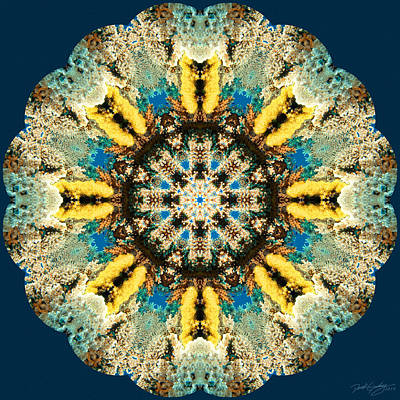 Digital Art - Nature's Mandala 29 by Derek Gedney