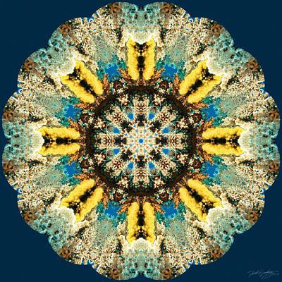 Digital Art - Nature's Mandala 29 by Derek Gedney