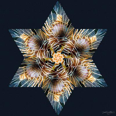 Digital Art - Nature's Mandala 30 by Derek Gedney