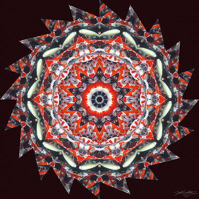 Digital Art - Nature's Mandala 31 by Derek Gedney