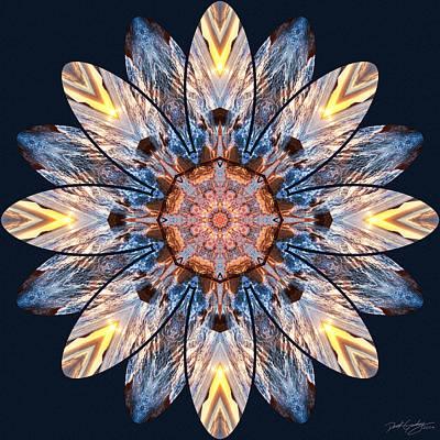 Digital Art - Nature's Mandala 52 by Derek Gedney