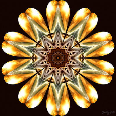 Digital Art - Nature's Mandala 53 by Derek Gedney
