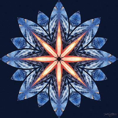 Digital Art - Nature's Mandala 56 by Derek Gedney
