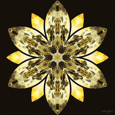 Nature's Mandala 57 Art Print