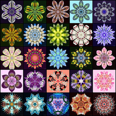 Digital Art - Nature's Mandala Page 01 by Derek Gedney