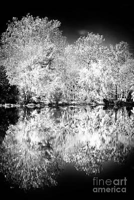 Pine Barrens Photograph - Natures Mirror by John Rizzuto