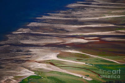 Photograph - Nature's Palette by Cynthia Lagoudakis