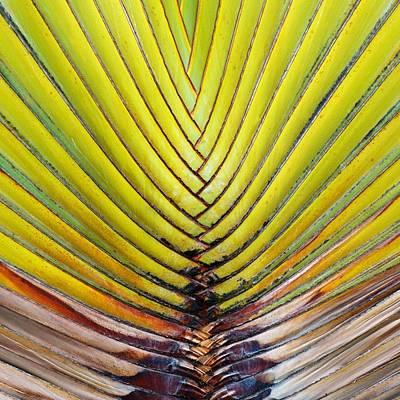 Natures Perfect Weave Original