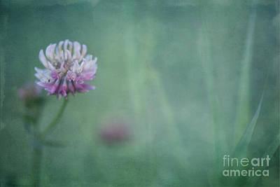 Natures Scent Art Print by Priska Wettstein