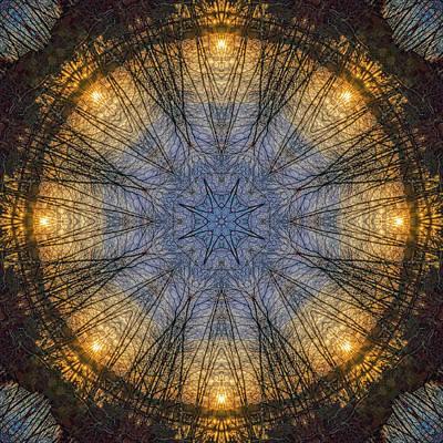 Photograph - Nature's Skylight Mandala 1 by Beth Sawickie