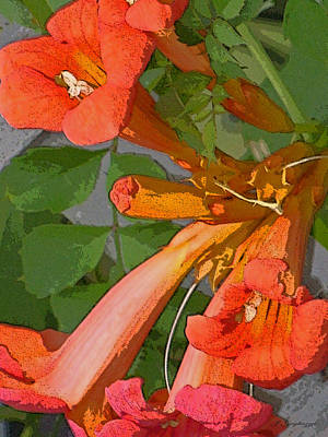 Trumpet Digital Art - Nature's Trumpets by Jean Gugliuzza