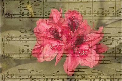Nature's Tune Art Print