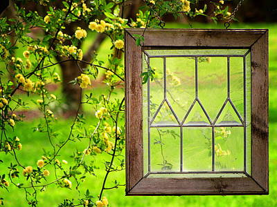 Nature's Window Art Print by Greg Simmons