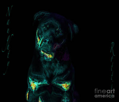 Photograph - Naughty Rottie by Mayhem Mediums